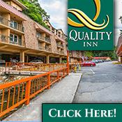 Quality Inn & Suites Creekside